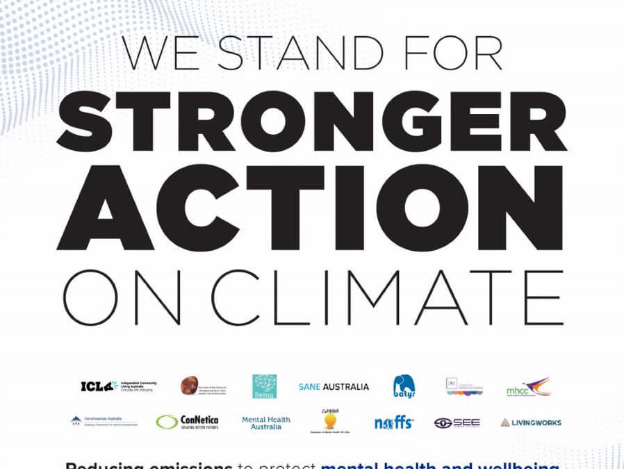 Mental health charities call for stronger action on climate change and support forNGO'sin the lead up to Black Summer Bushfire anniversary.