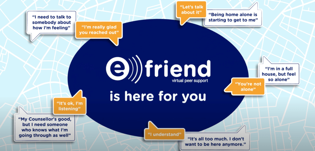 efriend infromation poster